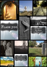 Flash 500 eBook cover