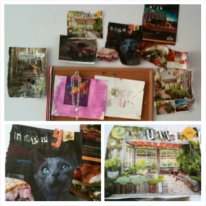 Haley's vision board: lower left; blue-eyed, grey-haired kitty. Lower right; cozy 'eksulent' outdoor space. ;)