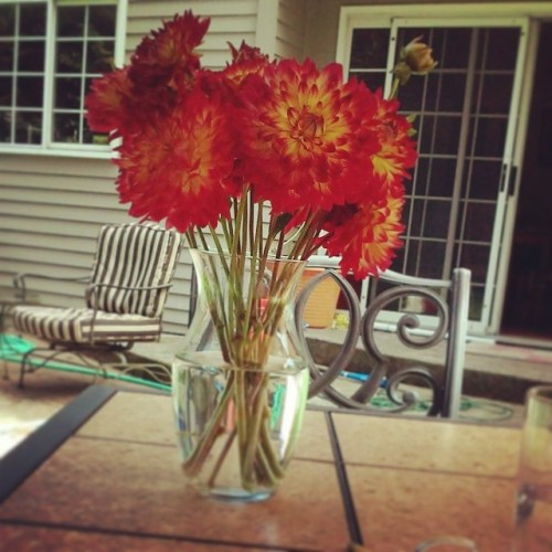 Flowersforme